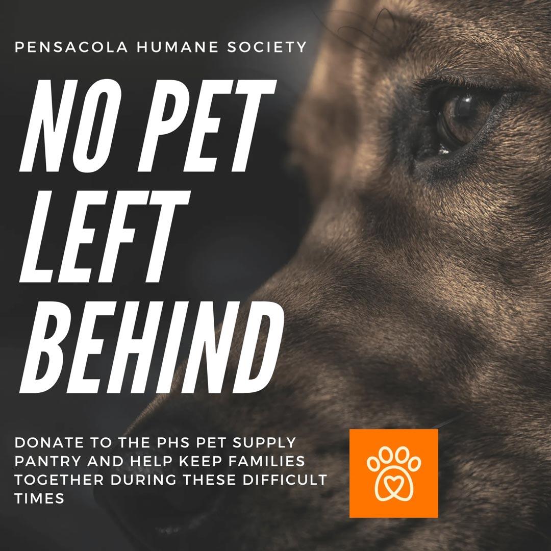 no-pet-left-behind